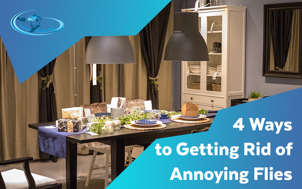 4 Ways to Getting Rid of Annoying Flies