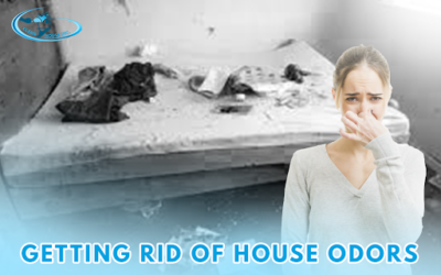 Getting Rid of House Odors